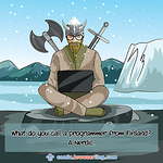 Viking - Webcomic about programming, web design and web browsers